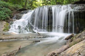 Weaver Falls