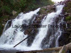 Fairy Creek, BC