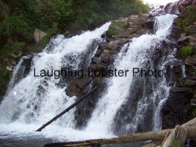 Fairy Creek Waterfalls